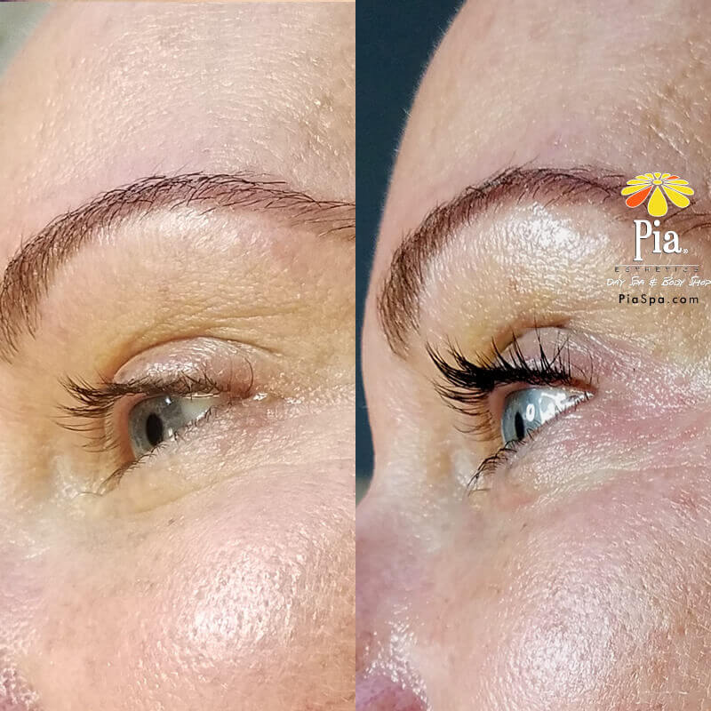 Eyelash Lift In Tampa Eyelash Tinting Eyebrow Tinting