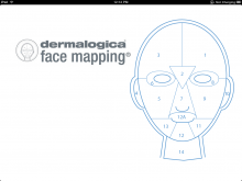 Face Mapping #facemapping